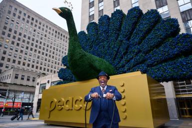 peacock-watch