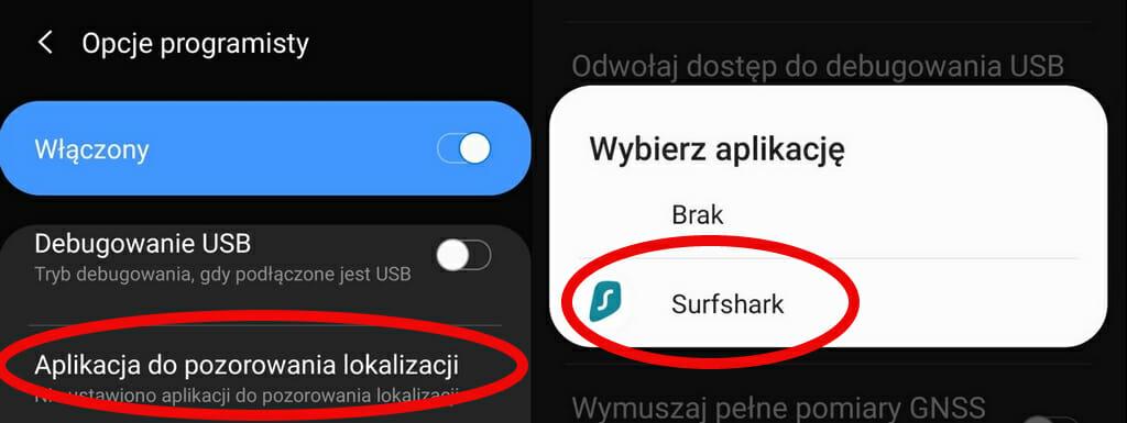 Wybierz Surfshark